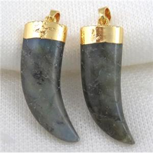 Labradorite horn pendant, gold plated