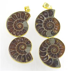 double Ammonite Fossil pendant, gold plated