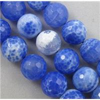 blue Fire Agate Stone beads, faceted round, 10mm dia, approx 38pcs per st