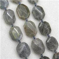 Labradorite beads, faceted rectangle